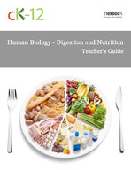 Human Biology Digestion and Nutrition Teacher's Guide