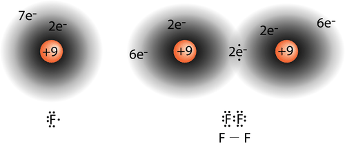Picture of electron distribution in a fluorine molecule