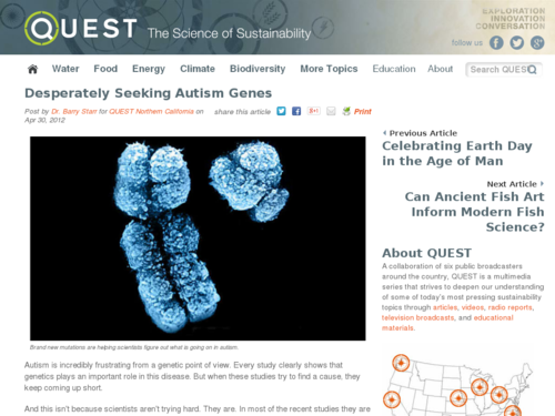 Desperately Seeking Autism Genes