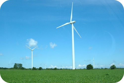 Wind turbines use a renewable resource