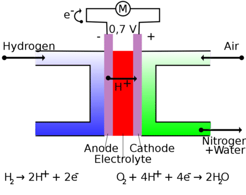 Electrochemical Cells | CK-12 Foundation