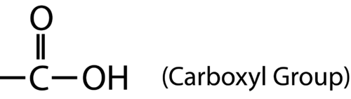 Structure of a carboxylic acid
