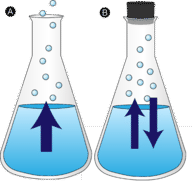 Evaporation occurs when liquid turns into gas, while condensation occurs when gas turns into liquid