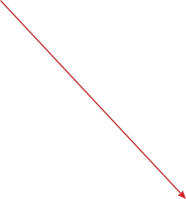 Directed Line Segments