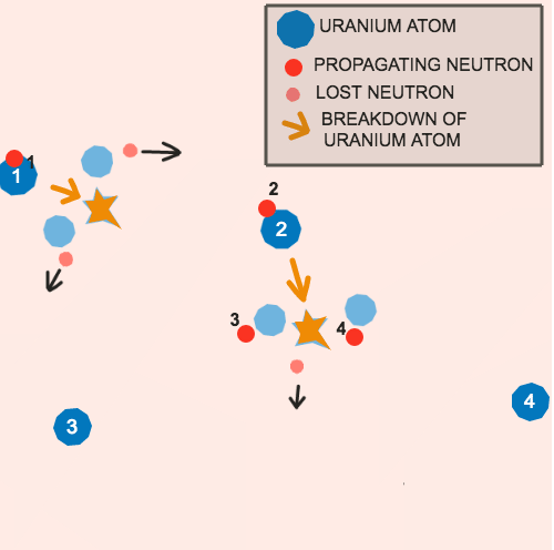 Nuclear Fission Processes