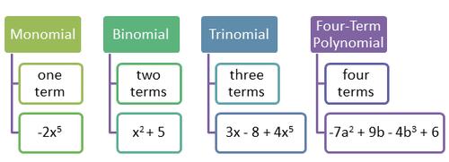 Monomials, Binomials, and Trinomials ( Read ) | Algebra | CK-12 ...
