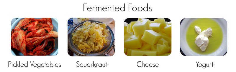 Various fermented foods
