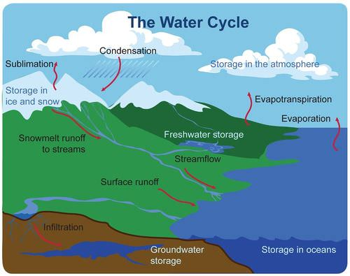Water cycle read biology ck 12 foundation the water cycle tracks the flow of water ccuart Choice Image