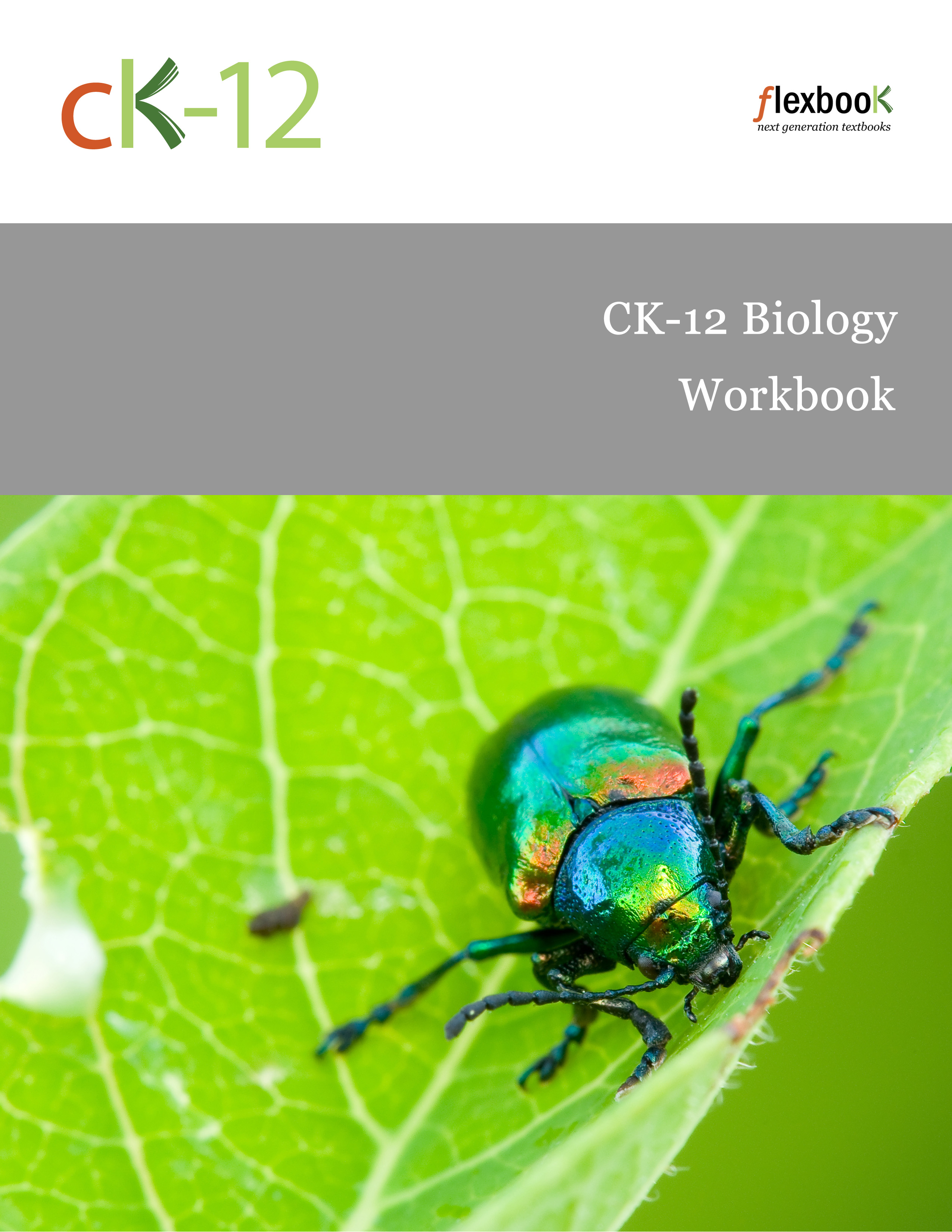 The biology coloring book answers