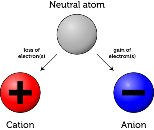 Ions are created by the loss or gain of electrons