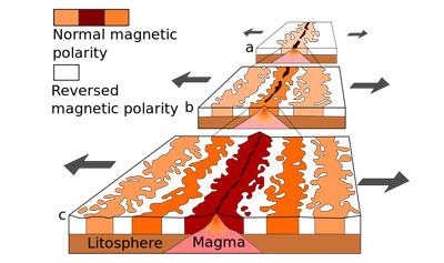 Magnetic Field Reversal Quiz - MS PS