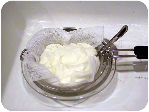 Yogurt is made from milk fermented with bacteria