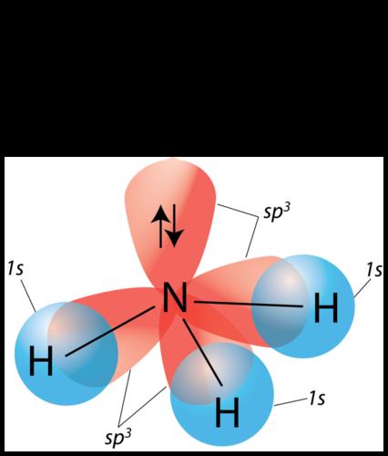 Hybridization of Atomic Orbitals | CK-12 Foundation