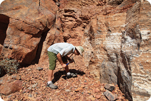 Geologist studying rocks in the field