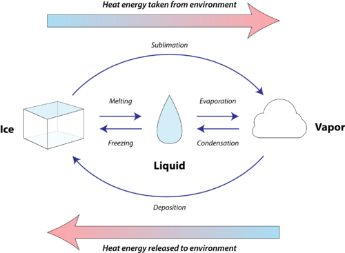 Diagram of phase changes in relation to gain or loss of heat from the environment