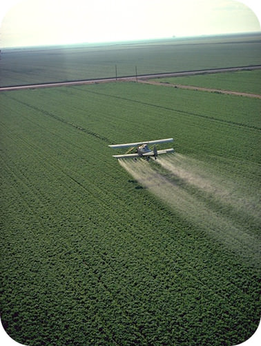 Plane releasing pesticides over a field