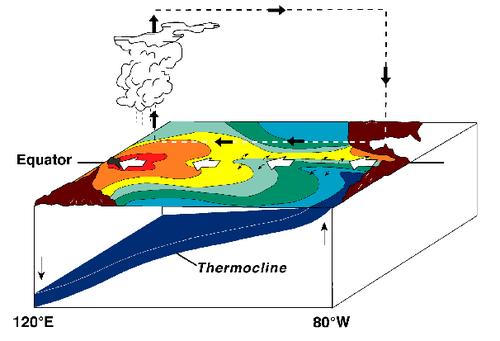 Diagram of La Nina years on the Pacific Ocean
