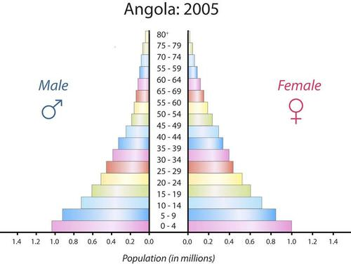 Angola's population pyramid is typical of Stage 2 demographic transition