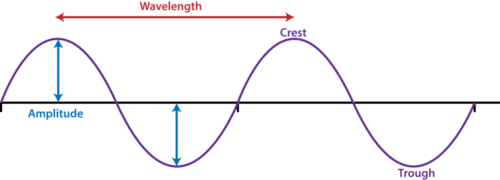 The crest, trough, and amplitude of a wave