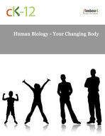 Human Biology - Your Changing Body