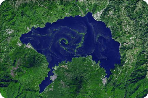 Cyanobacteria can bloom in bodies of water