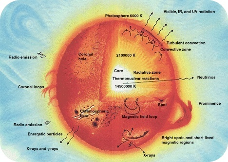 Structure of a sun-like star