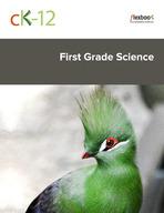 CK-12 First Grade Science