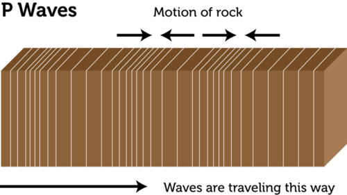 Primary waves are longitudinal waves