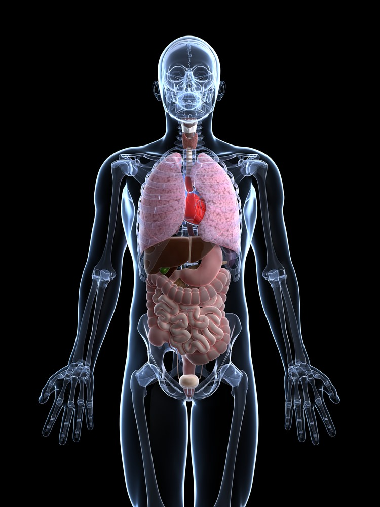 extended essay abstract art topics