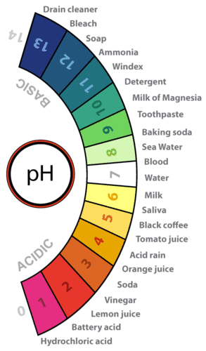 A pH scale along with numbers of the pH of some common substances