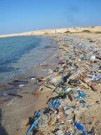 Beach filled with garbage