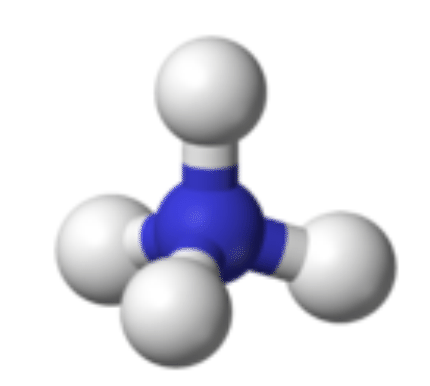 Structure of an ammonium ion