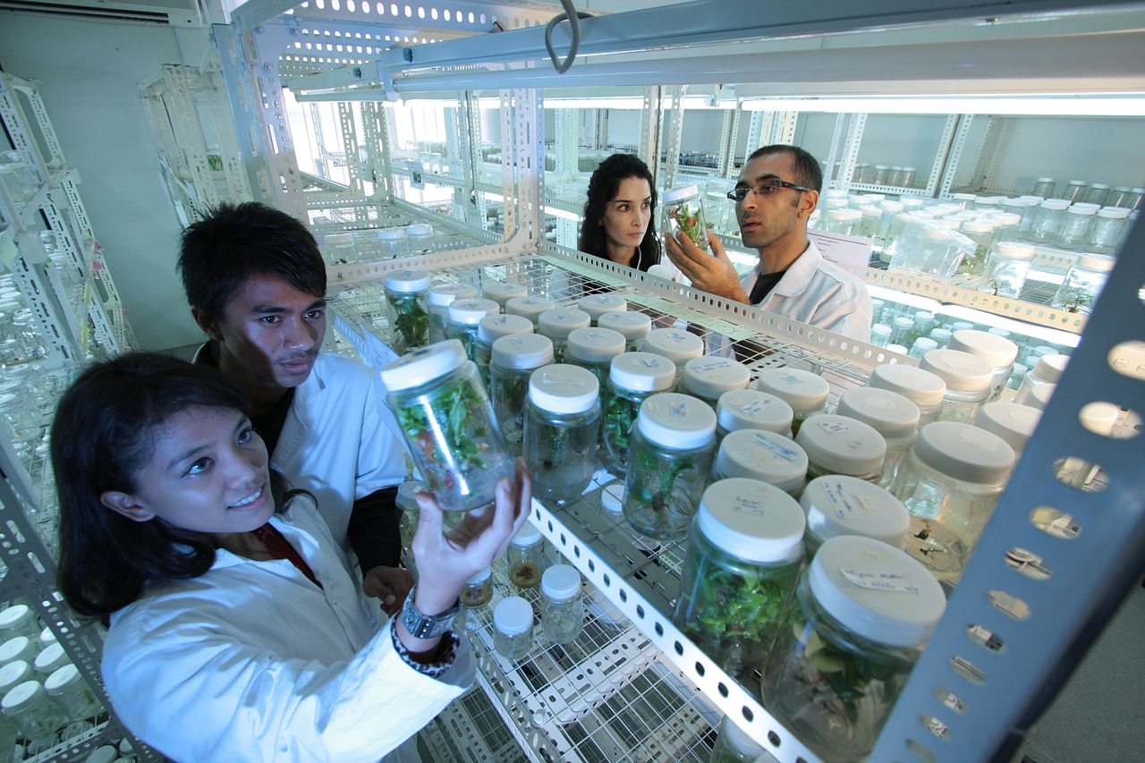 Scientific Methods Advanced Ck 12 Foundation