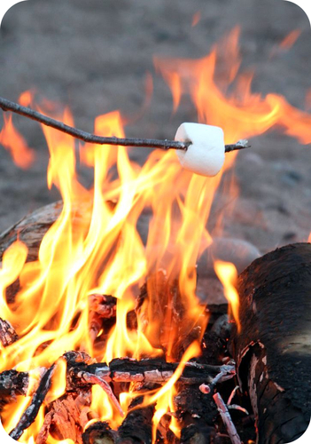 A marshmallow burning on a stick is a combustion reaction