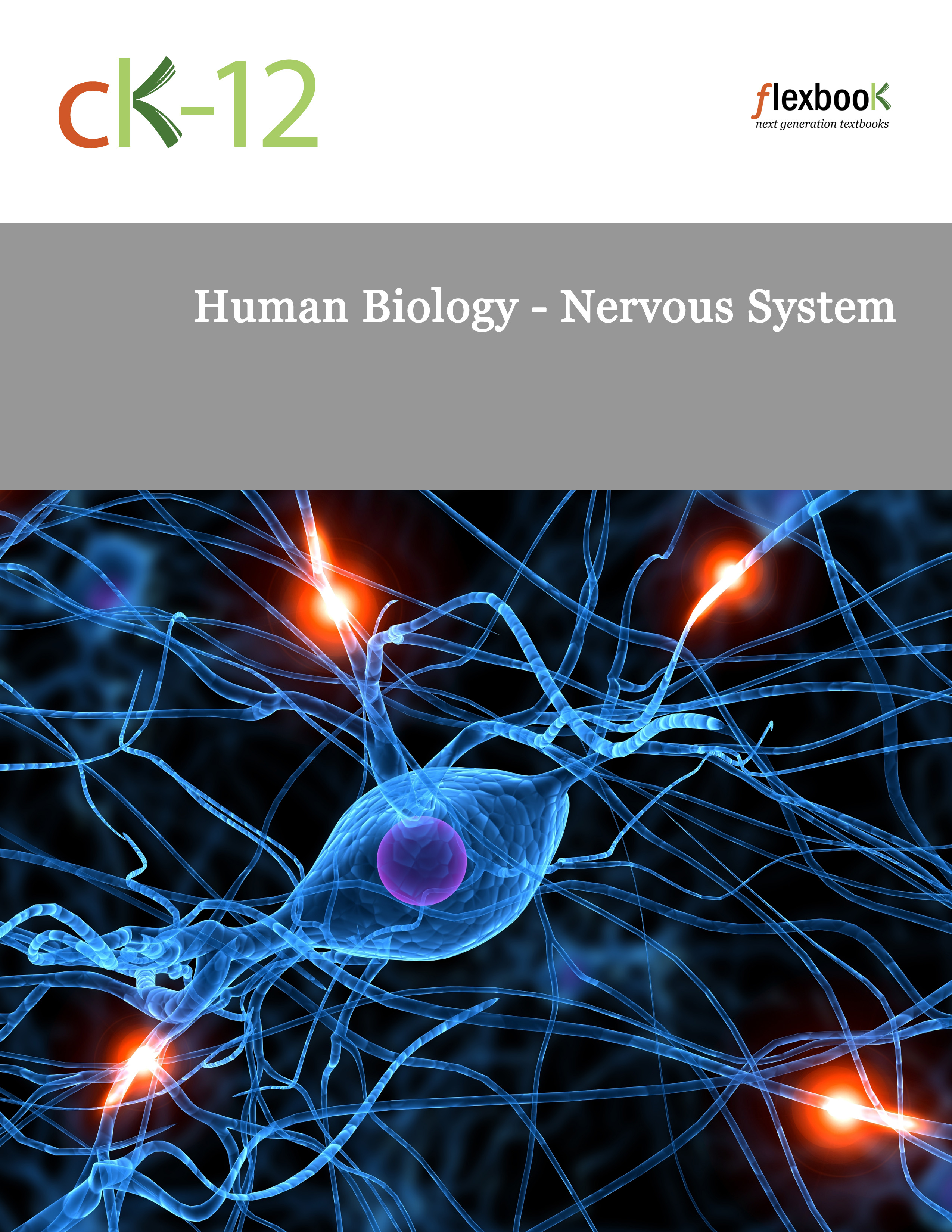 Functions of The Somatic   Autonomic Nervous Systems