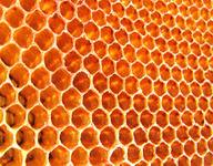 Identifying Tessellations