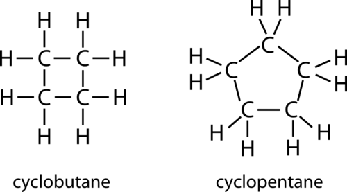 Structure of cyclobutane and cyclopentane