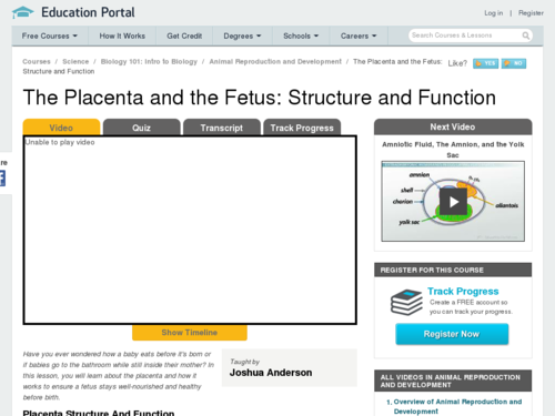 The Placenta and the Fetus: Structure and Function
