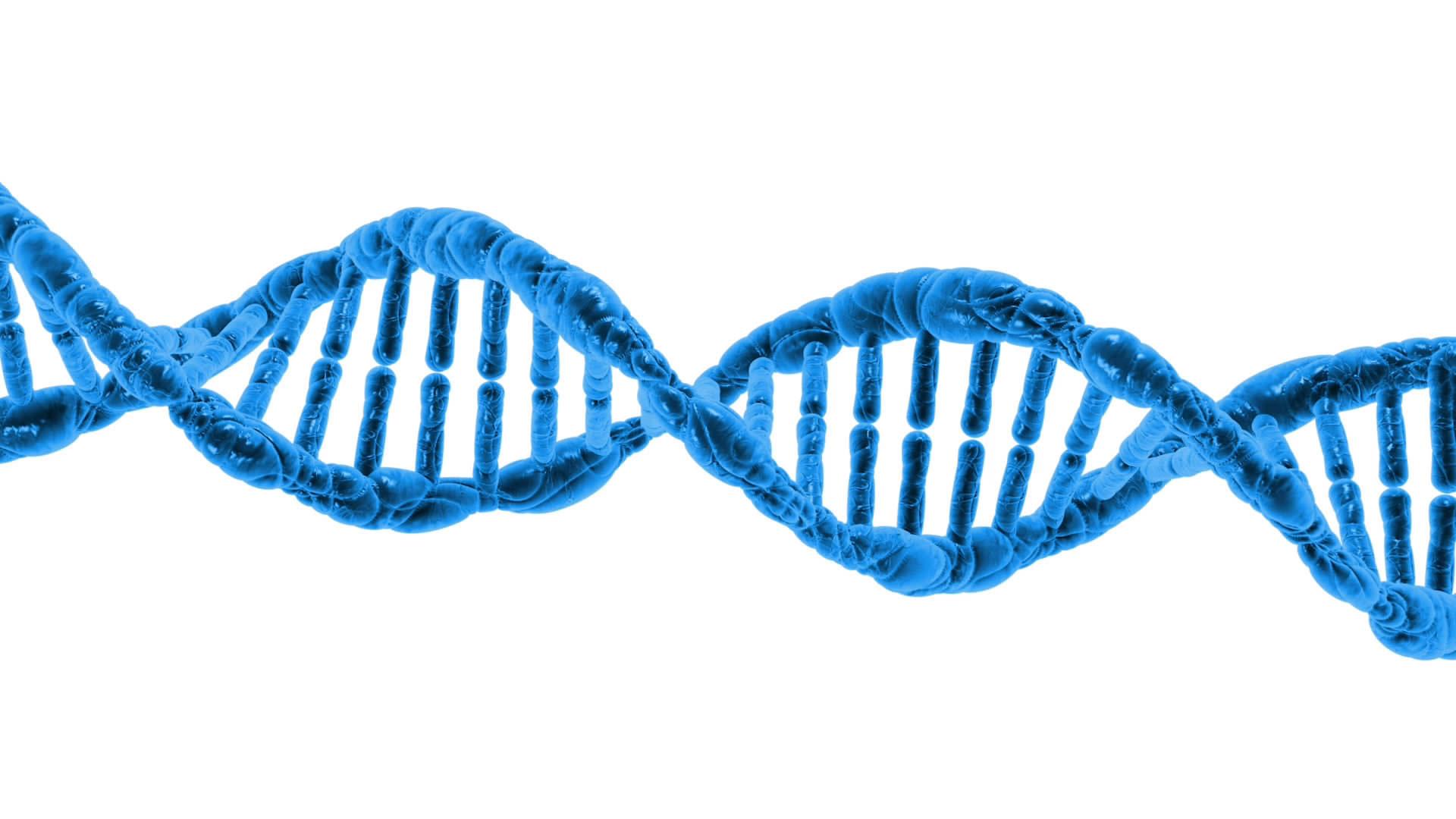 Human - Genetics - thumbnail