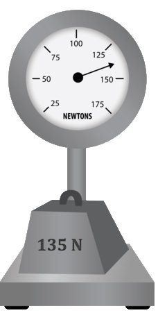 The weight of an object is measured in Newtons with a calibrated spring scale