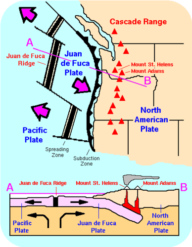 Seismic evidence for a cold serpentinized mantle wedge beneath ...