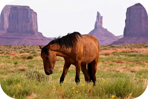 The red rocks of Monument Valley are due to the oxidation of iron in the rock