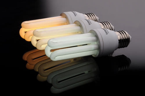 Fluorescent light bulbs are much more efficient than standard incandescent light bulbs.