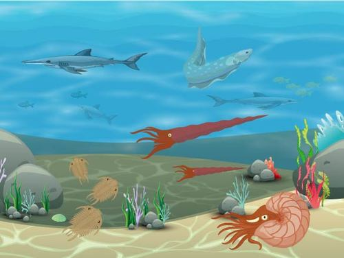 Life During the Paleozoic  *