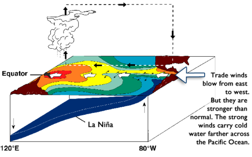 Diagram of the Pacific Ocean during a La Nina year