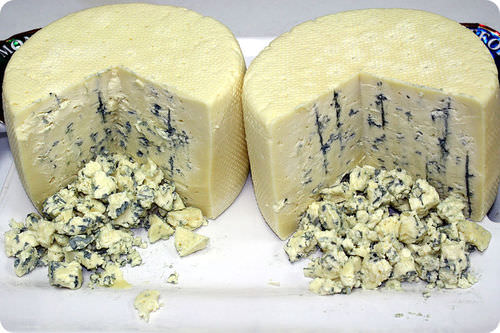 Blue cheese has mold growing in it.