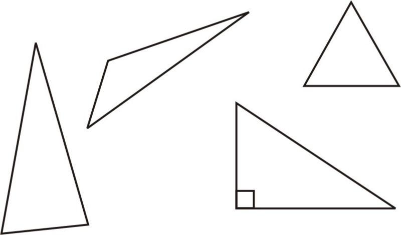 Triangle Basics
