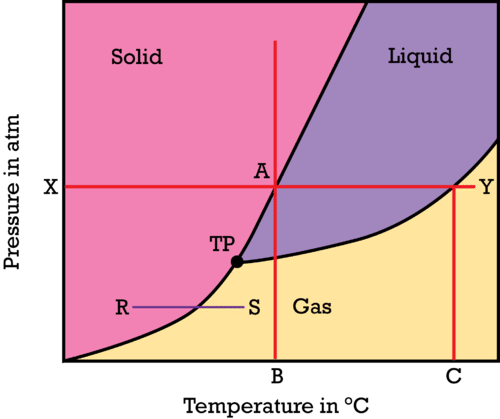 A phase diagram shows the state of a substance as a function of temperature and pressure