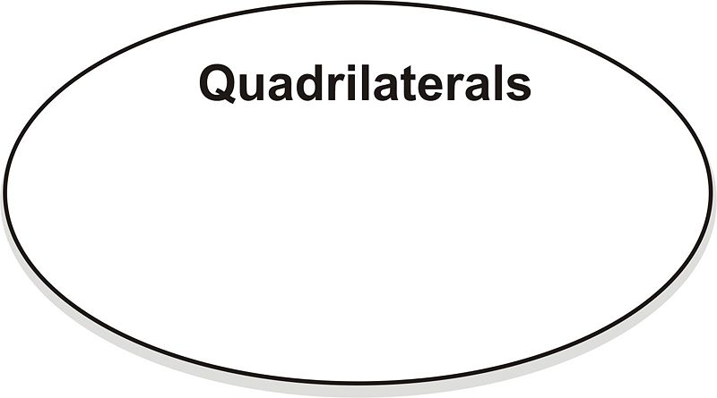 Classifying quadrilaterals ck 12 foundation now we can add in classes of quadrilaterals ccuart Choice Image