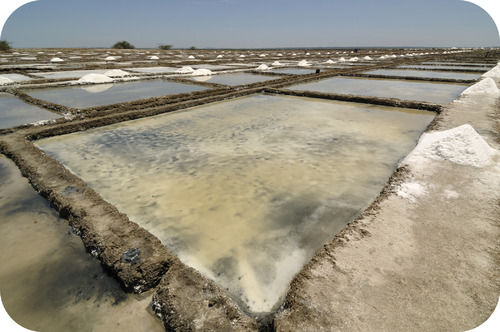Salt is formed from evaporating saltwater